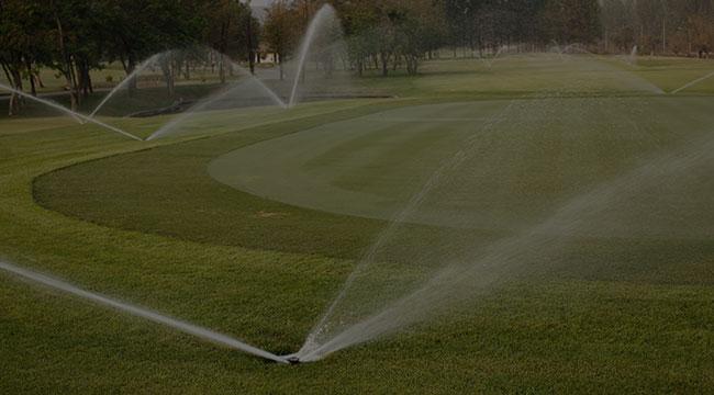 Newtown Irrigation