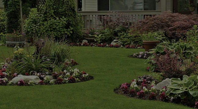 Newtown Landscape Design